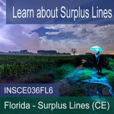 Florida: 6 hr all Licensense CE - Surplus Lines (INSCE036FL6)